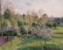 Яблони в цвету - Писсарро, Камиль