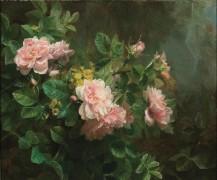 Розы - Риттерсхофер, Медард