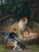 Котята, играющие в корзинке - Адам, Юлиус