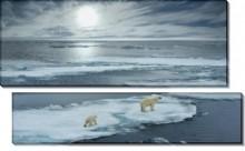 Мишки на льдине - Сток