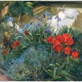 Красные тюльпаны и гуси