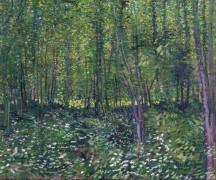 Деревья и подлесок (Trees and Undergrowth), 1887 лето - Гог, Винсент ван