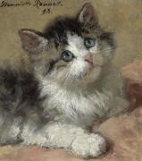 Любознательный котенок, 1893 - Роннер-Книп, Генриетта