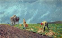 Уборка картофеля - Хьюз, Артур