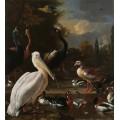 Пеликан и другие птицы у пруда - Хондекутер, Мельхиор