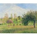 Луг на Эрагни, лето, солнце, вечером, 1901 - Писсарро, Камиль