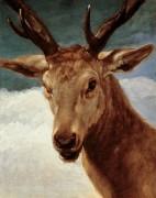 Голова оленя - Веласкес, Диего