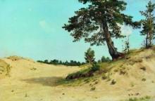 Сосна на песке, 1884 - Шишкин, Иван Иванович