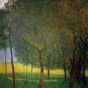 Фруктовые деревья - Климт, Густав
