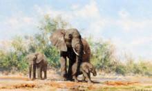 Слон и слонята - Шеперд, Девид (20 век)