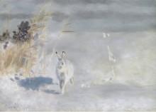 Зимний окрас - (заяц-беляк), 1932 - Лильефорс, Бруно