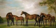 Лошади, встревоженные приближающейся бурей - Стаббс, Джордж
