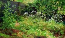 Уголок заросшего сада. Сныть-трава, 1885 - Шишкин, Иван Иванович