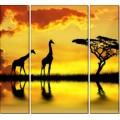 Жирафы на закате - Сток