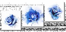Брызги роз 2