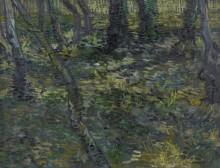 Подлесок с ивами (Undergrowth with Ivy), 1889 - Гог, Винсент ван