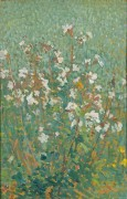 Полевые цветы - Мартен, Анри Жан Гийом