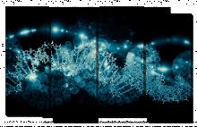 Молекулы в свечении_2