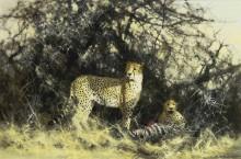 Гепарды с добычей - Шеперд, Девид (20 век)