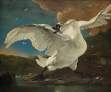 Испуганный лебедь - Асселейн, Ян
