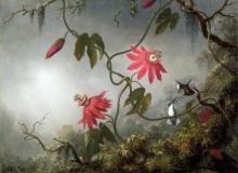 Пейзаж с цветами и колибри - Хед, Мартин Джонсон