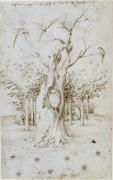 Слышащий лес и зрячее поле - Босх, Иероним (Ерун Антонисон ван Акен)