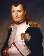 Портрет Наполеона - Давид, Жак-Луи