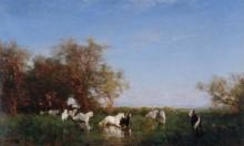 Дикие лошади в Камарге -  Зим, Феликс
