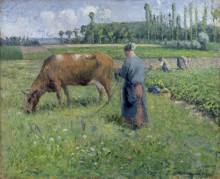 Женщина, пасущая корову - Писсарро, Камиль