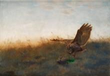 Филин, охотящийся на зайца - Лильефорс, Бруно