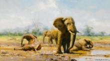 Слоны на водопое - Шеперд, Девид (20 век)