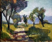 Оливковые деревья - Матисс, Анри