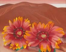 Красные холмы с цветами - О'Кифф, Джорджия