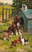 Пес и котята - Хейс, Сидни