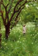 Фруктовый сад - Готч, Томас Купер