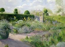 Сад с ирисами