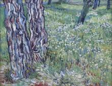 Сосны и одуванчики в саду больницы Сен-Поль (Pine Trees and Dandelions in the Garden of Saint-Paul Hospital), 1890 - Гог, Винсент ван