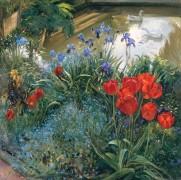 Красные тюльпаны и гуси - Истон, Тимоти