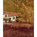 Красная осень - Борелли, Гвидо (20 век)