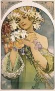 Цветок - Муха, Альфонс