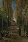 Тополиная аллея на закате (Avenue of Poplars at Sunset), 1884 - Гог, Винсент ван
