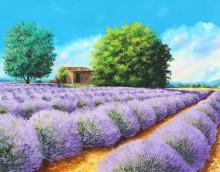 Лавандовое поле - Жаньячик, Жан-Марк (20 век)
