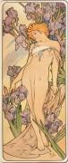 Цветы - ирисы - Муха, Альфонс