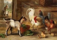 Козы, курицы и цыплята в хлеве - Хант, Эдгар