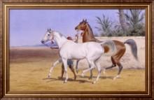 Вывоз арабских скакунов - Берд, Джон Харингтон Александр