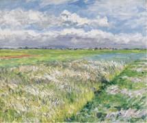 Равнина Женвилье, этюд в желтом  и зеленом, 1884 - Кайботт, Густав