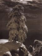 На севере диком, 1890 - Шишкин, Иван Иванович