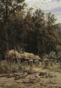 Пасека, 1882 - Шишкин, Иван Иванович