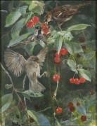Воробьи на вишневых ветках - Лильефорс, Бруно