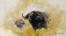Азиатский буйвол - Шеперд, Девид (20 век)